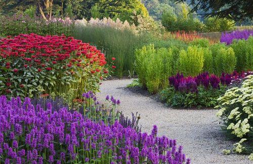 Цветущий сад 6 месяцев в году